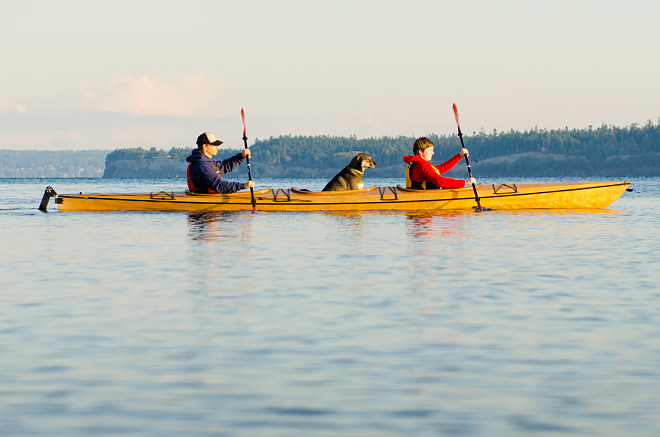Triple Kayak profile with dog