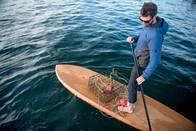 Pygmy 11 All Rounder Wooden Sup Build Your Own Paddleboard