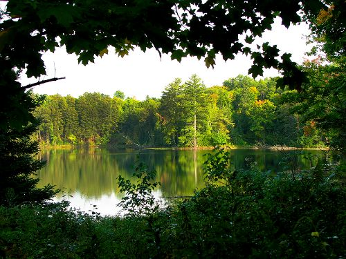 Trees create a keyhole view of beautiful Mystery Lake.